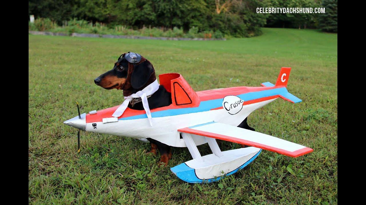 Air Ride Hot Dog