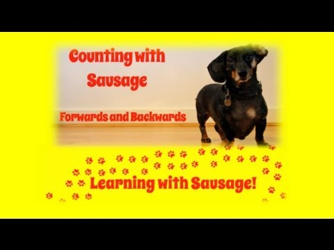 Counting to ten forwards and backwards with a sausage dog! KS1 Year 1 Maths.