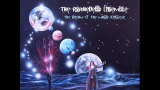 Watch Psychedelic Ensemble The Secrets Of Your Mind video