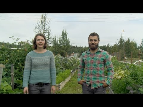 Managing a Community Garden – In the Alaska Garden with Heidi Rader-
