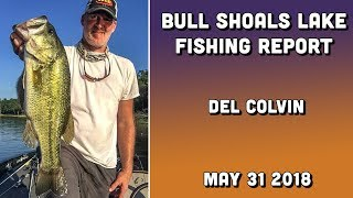 Bull Shoals Lake Fishing Report - Del Colvin