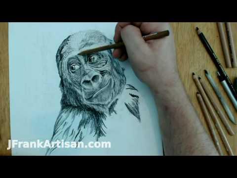 Gorilla Time Lapse in Carbon Pencil