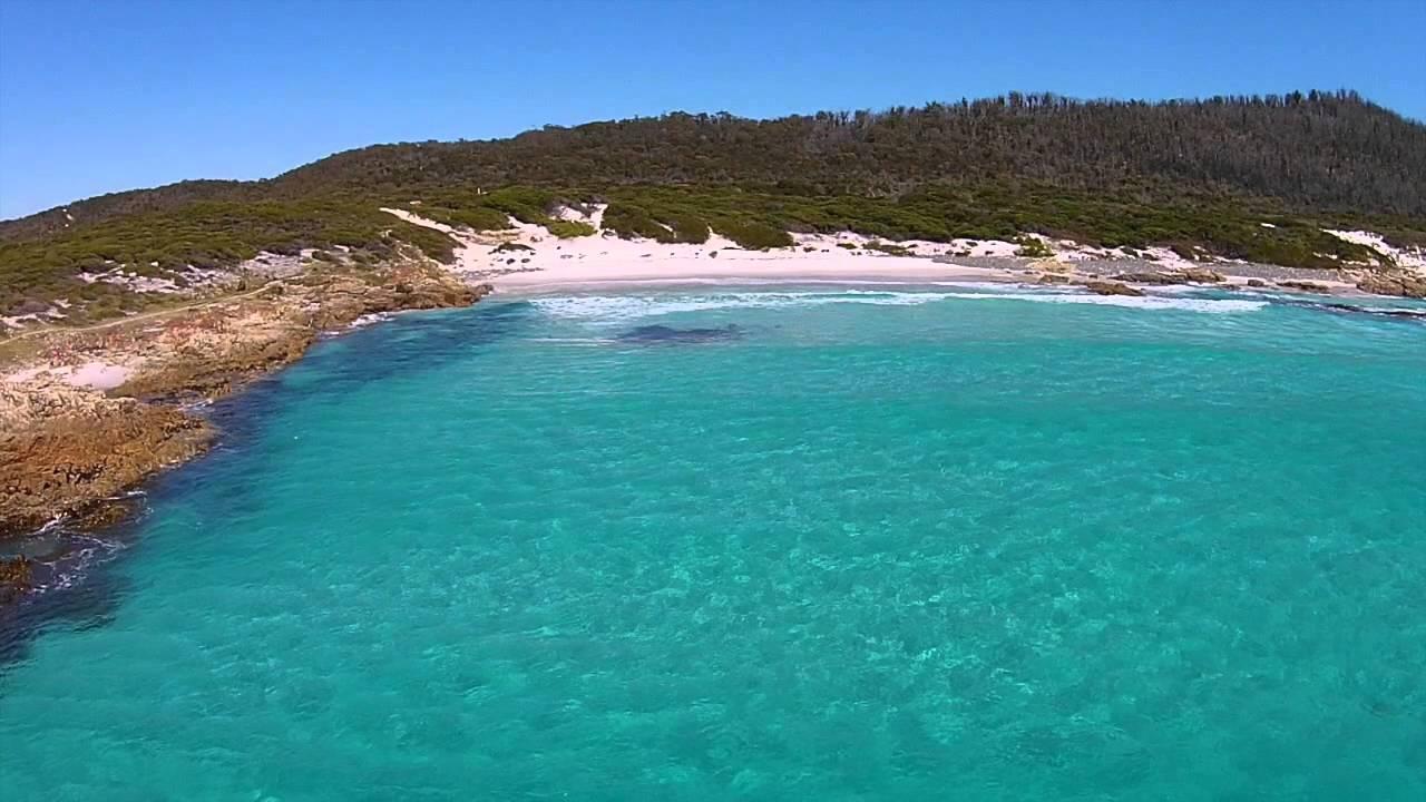 friendly beaches tasmanie