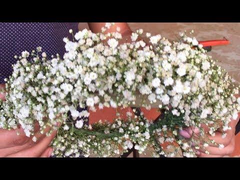 Como fazer tiara de gipsofila ( mosquitinho) ‹ Art Fleur ›