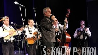 6. Memorijalni koncert Darka Paurića (reportaža) - Osijek 2015