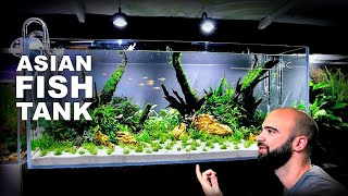 Aquascape Tutorial: EPIC 4ft Asian Fish Aquarium (How To: Full Step By Step Guide, Planted Tank)