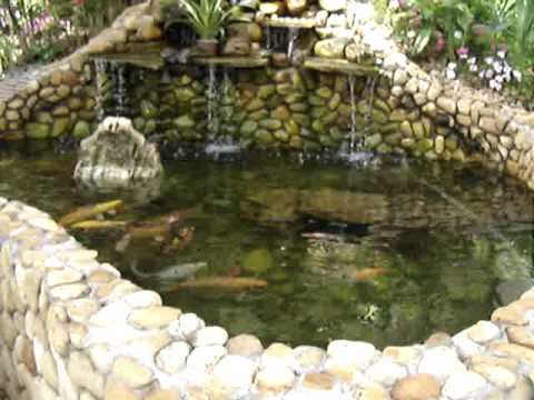 Lago ornamental com filtragem cubos youtube for Koi pond depth