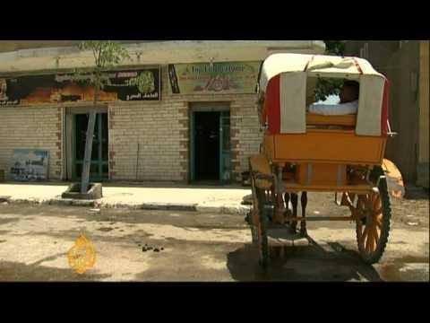 Revolution Halts Tourists Visiting Egypt