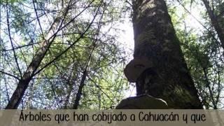 Cahuacan Unido por los Derechos Humanos A.C