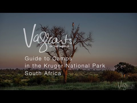 A Guide to Kruger National Park Camps