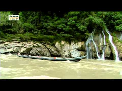 phoenix: Flüsse der Welt - Urubamba Amazonas