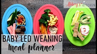 Easy Baby Led Weaning Meal Planner for Babies & Toddlers | Breakfast, Lunch & Dinner Menu