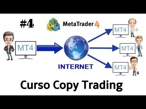 como-conectar-cuenta-a-trader-profesional