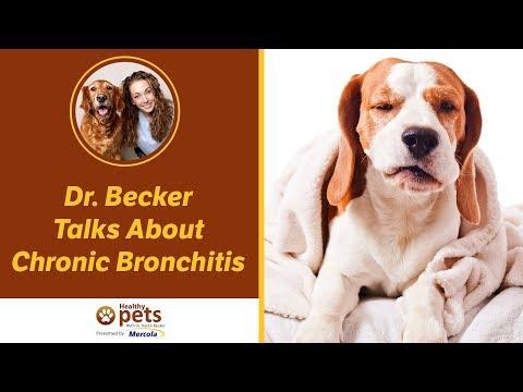 Dr. Becker Talks About Chronic Bronchitis