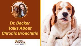leszokni a bronchitis dohányosról
