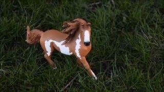 Wind Dancer The Story of One Wild Stallion part 2 Schleich Movie