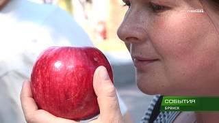 Яблочный спас. Гуляния 20 08 18