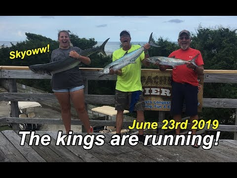 Huge Kings Caught From Apache Pier