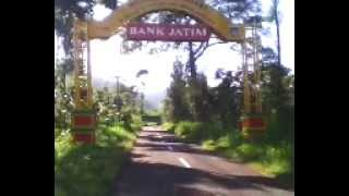 Welcome To Tosari sponsored by Bank Jatim