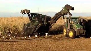Florida Sugar Cane Harvest John Deere Equipment