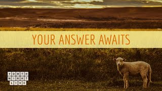 Your Answer Awaits