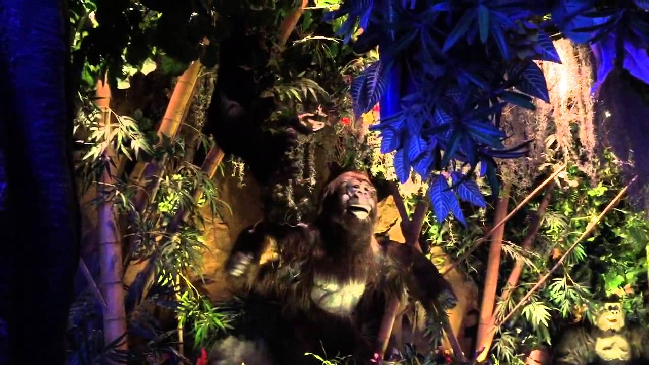 Rainforest Cafe Playlist