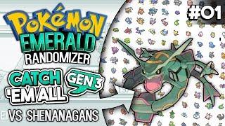 Gen 3 CATCH EM ALL Randomizer Race vs Shenanagans   Pokemon Emerald #1