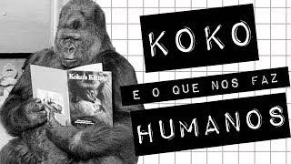 Baixar KOKO E O QUE NOS FAZ HUMANOS #meteoro.doc