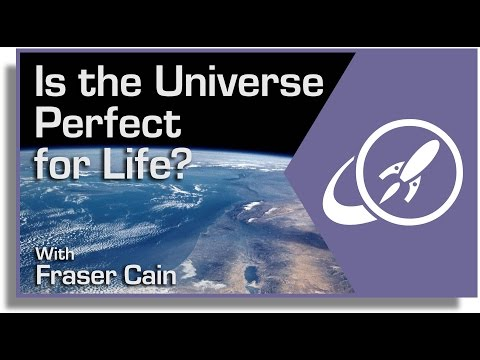Is The Universe Perfect For Life? Understanding the Anthropic Principle