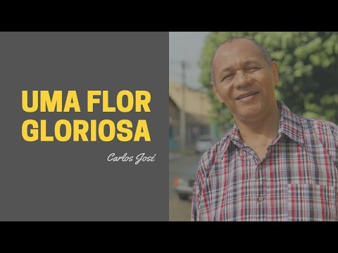 UMA FLOR GLORIOSA - 196 - HARPA CRISTÃ - Carlos José