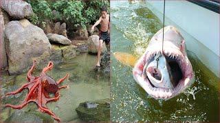 Satisfying Catching Seafood China : Shark , Octopus , Fishing , Crab ...15