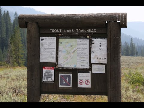 Yellowstone National Park - Trout Lake AND a Snake!