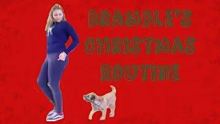 Bramble's Christmas Routine!