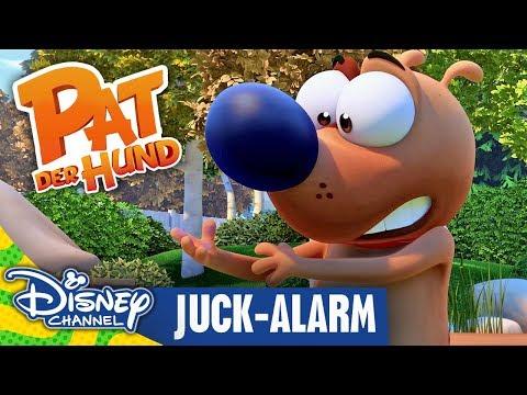 pat-der-hund---clip:-juck-alarm-|-disney-channel