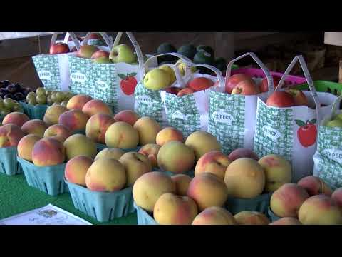 Va Beach Farmers' Market