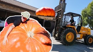 BUYING THE BIGGEST PUMPKIN IN CALIFORNIA! **2000 POUNDS**