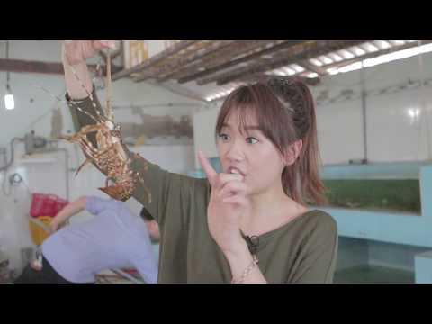 Hari Won - Siêu Ham Ăn - Hải Sản Bibo (Phan Thiết)