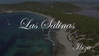 Las Salinas - Ibiza, videoexplained
