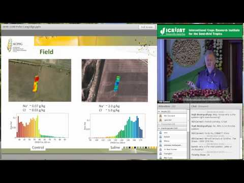 The opportunity to improve wheat performance in low-yielding environment