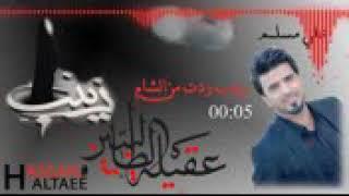 اجمل نعي عن زينب (ع)زينب ردت من اشام