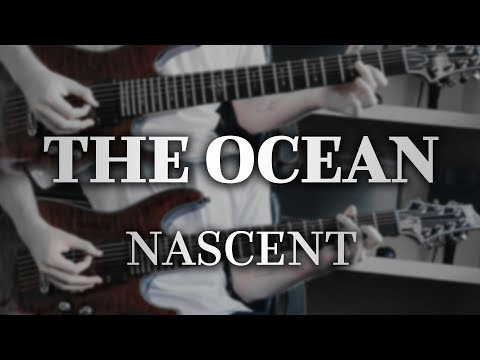 The Ocean - Devonian: Nascent (Guitar Cover With Play Along Tabs)