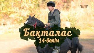 «Бақталас» телехикаясы. 14-бөлім / Телесериал «Бакталас». 14-серия
