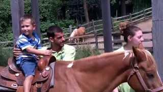 Turtle Back Zoo Pony Rides June 25, 2015