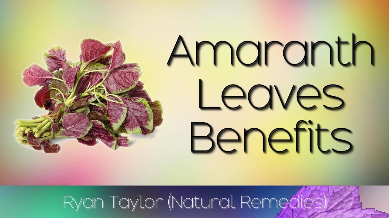 amaranth riebalų nuostoliai