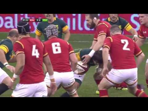 Rugby union 2016 Wales vs South Africa   Autumn international