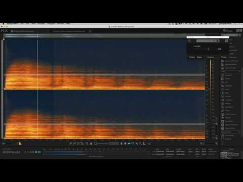 iZotope RX 6 201: Sound Designer's Toolbox - 2. Gain Clip Gain and Instant Process