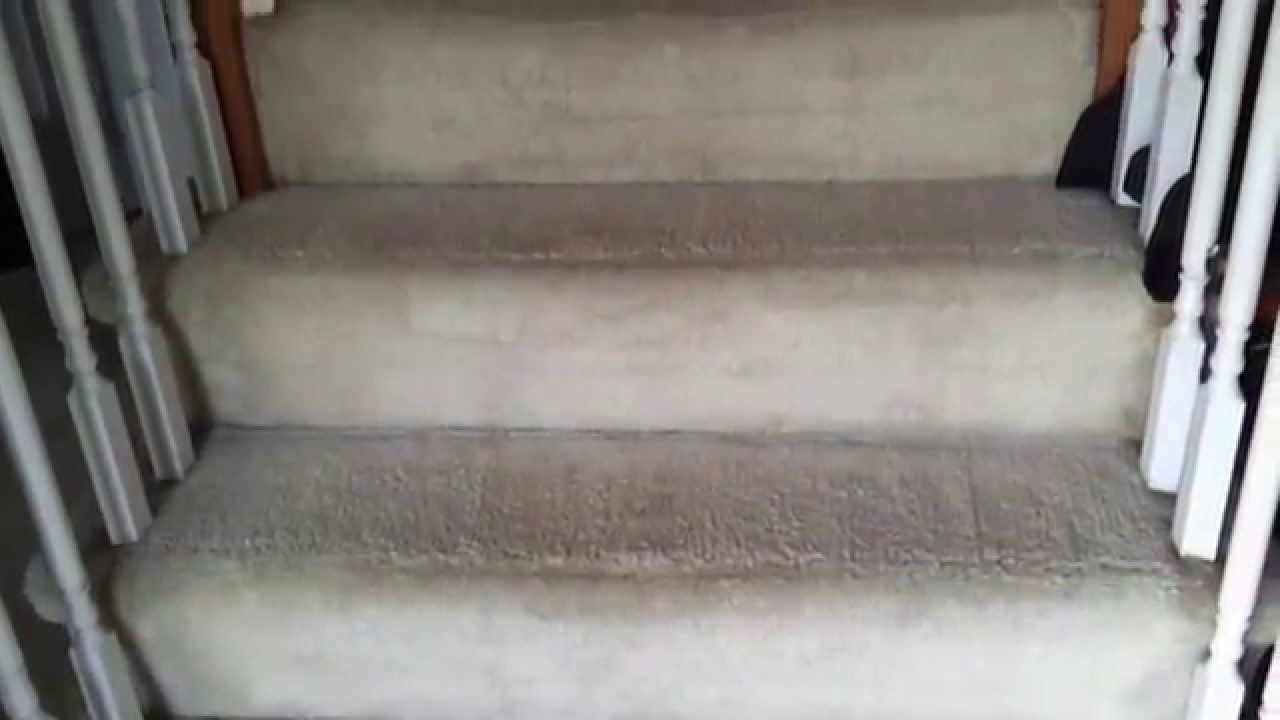C H Carpet Cleaning Servicing Richmond Chesterfield