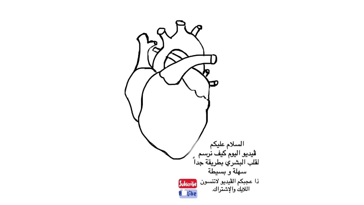 رسم قلب الإنسان خلال دقيقة بطريقة سهلة و بسيطة Youtube