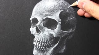 Drawing Time Lapse: Skull [White Pencil/Black Paper]