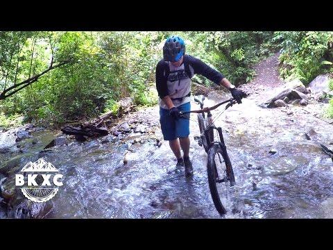 Mountain Biking near Nelson, New Zealand, with Sacred Rides